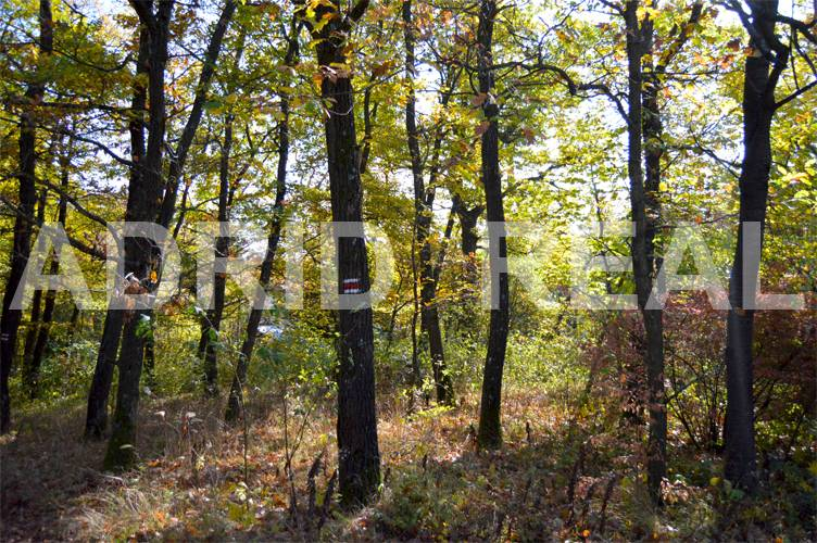 LAND FOR SALE IN MODRA